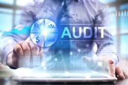 Role of External Auditor